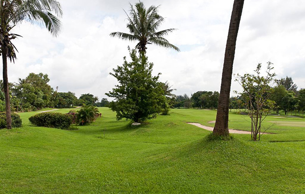 Yangon City Golf Course YCDC rough